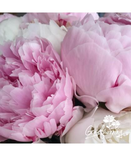 Pfingstrosen Blumenstrauß Kollektion 7 Sorten