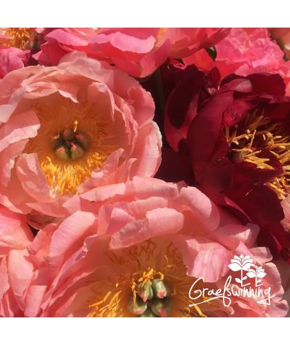 Trio paysagères et fleurs...